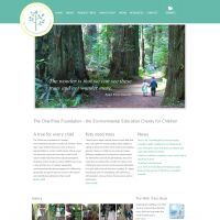 Wordpress Responsive Project